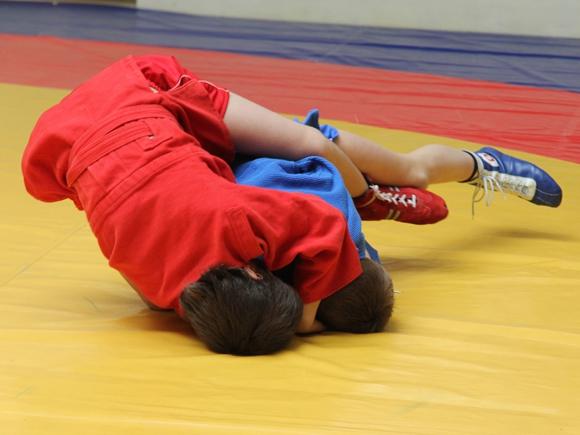 17.09-30.10.2017 г. Учебно-тренировочный сбор по самбо (мужчины, юниоры) в  ...