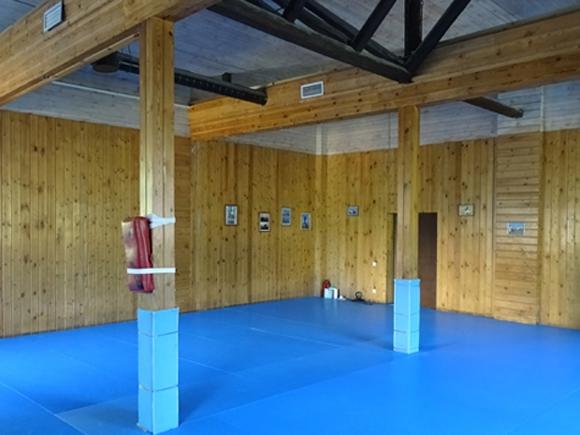 Помещение под спортивный зал - Царицыно