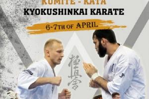 6-7 апреля 2019 года пройдет Международный турнир «Belarus Open Cup»